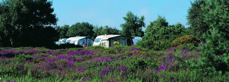 Touring & camping... relax at Kelling Heath