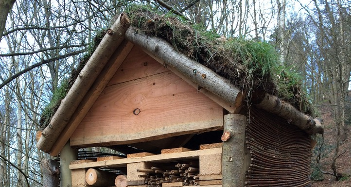 Five star Bug Hotel